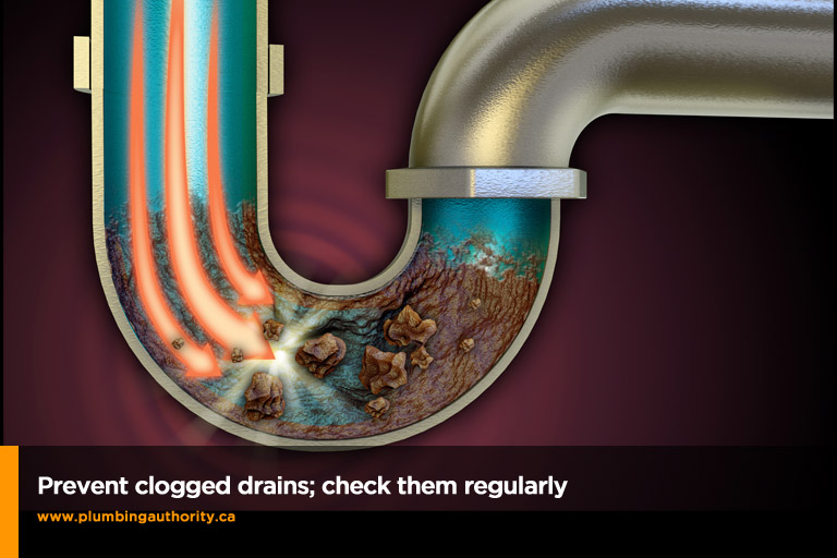 prevent clogged drains