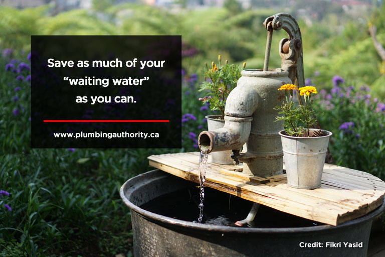 "Save as much of your ""waiting water"" as you can."