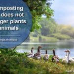 a-composting-toilet-does-not-endanger-plants-or-animals