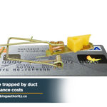 dont-be-trapped-by-duct-maintenance-costs