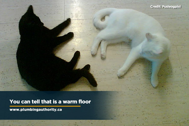 You can tell that is a warm floor