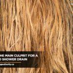 hair-is-the-main-culprit-for-a-clogged-shower-drain