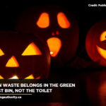 pumpkin-waste-belongs-in-the-green-compost-bin-not-the-toilet