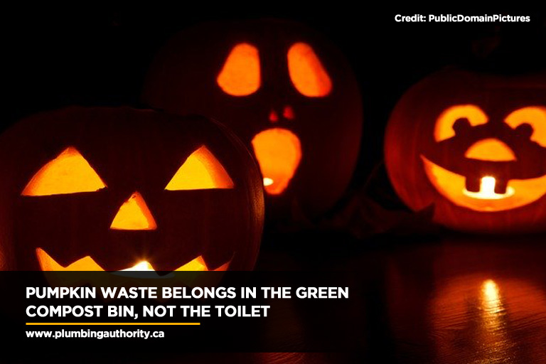 Pumpkin waste belongs in the green compost bin, not the toilet