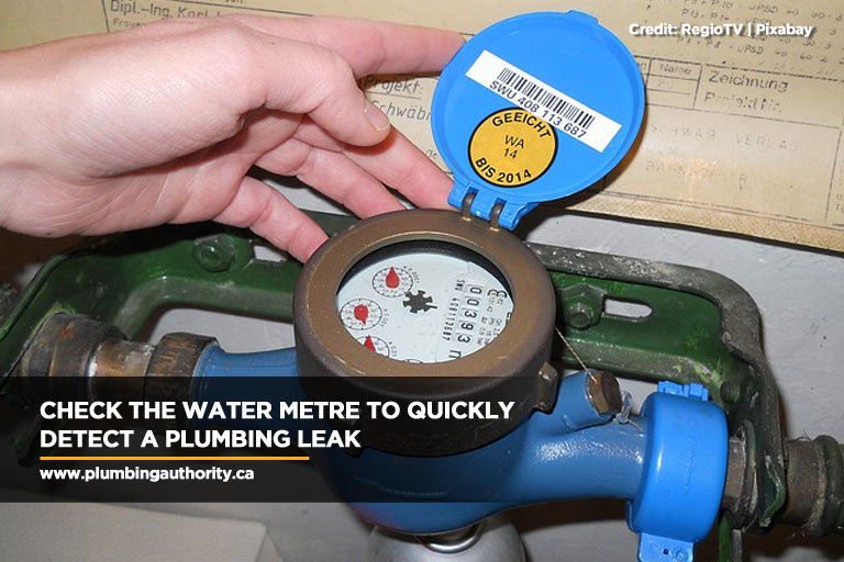 Check the water metre to quickly detect a plumbing leak