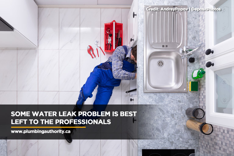 Some water leak problem is best left to the professionals