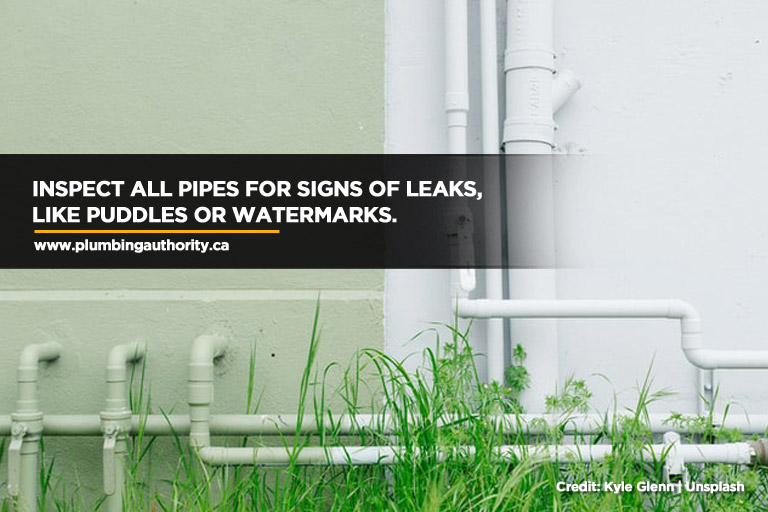 Inspect all pipes for signs of leaks, like puddles or watermarks.