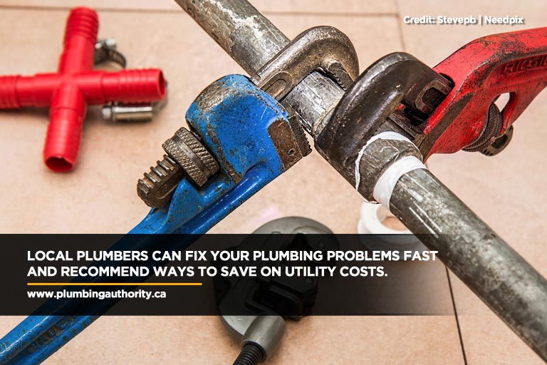 Local plumbers can fix your plumbing problems fast and recommend ways to save on utility costs.