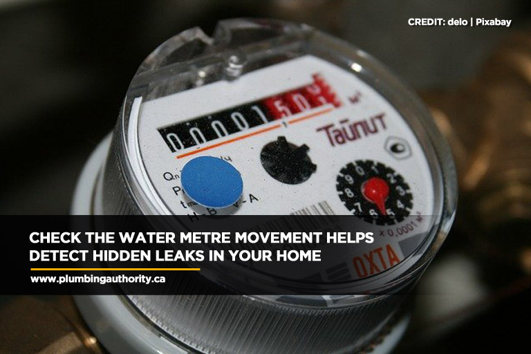 Check the water metre movement