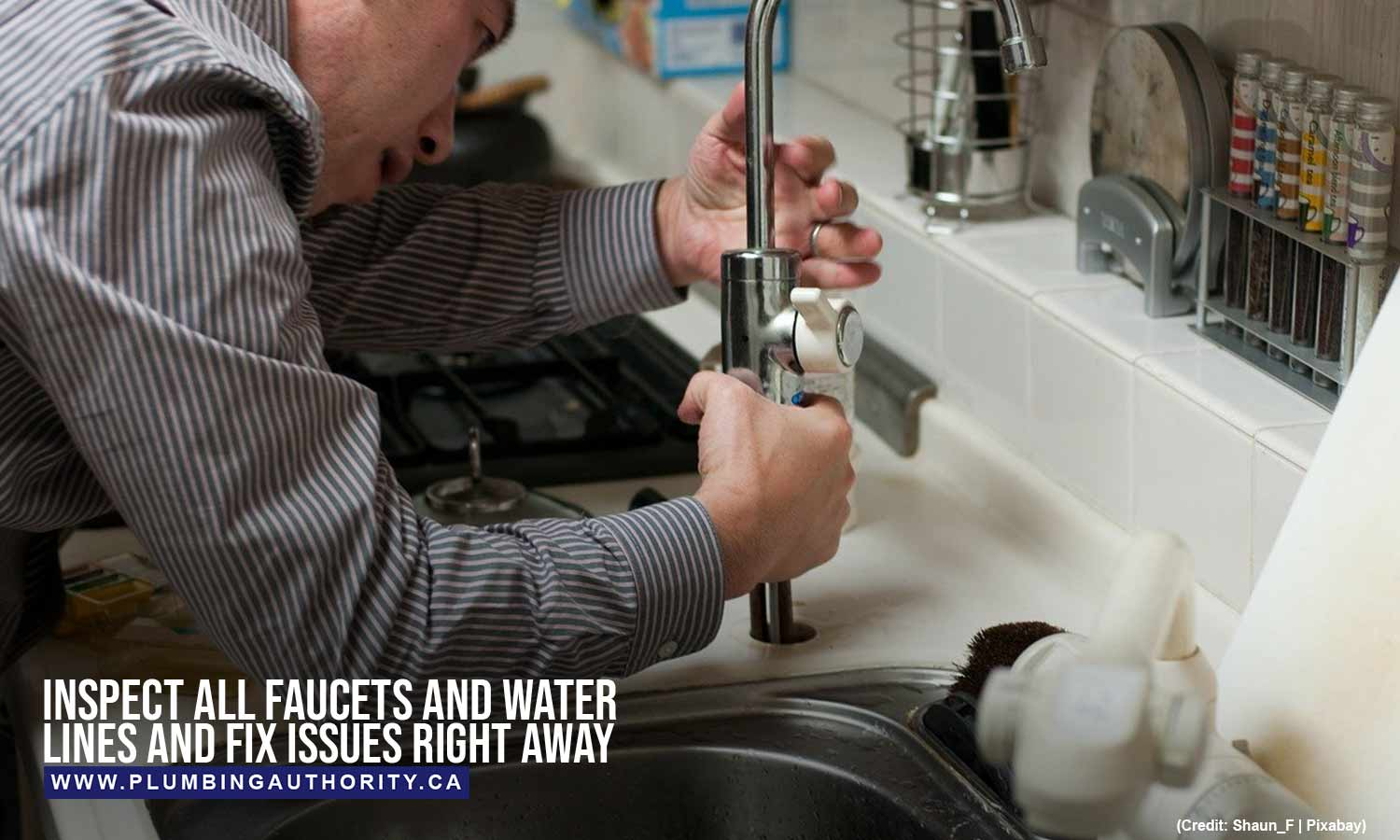 Inspect all faucets and water lines