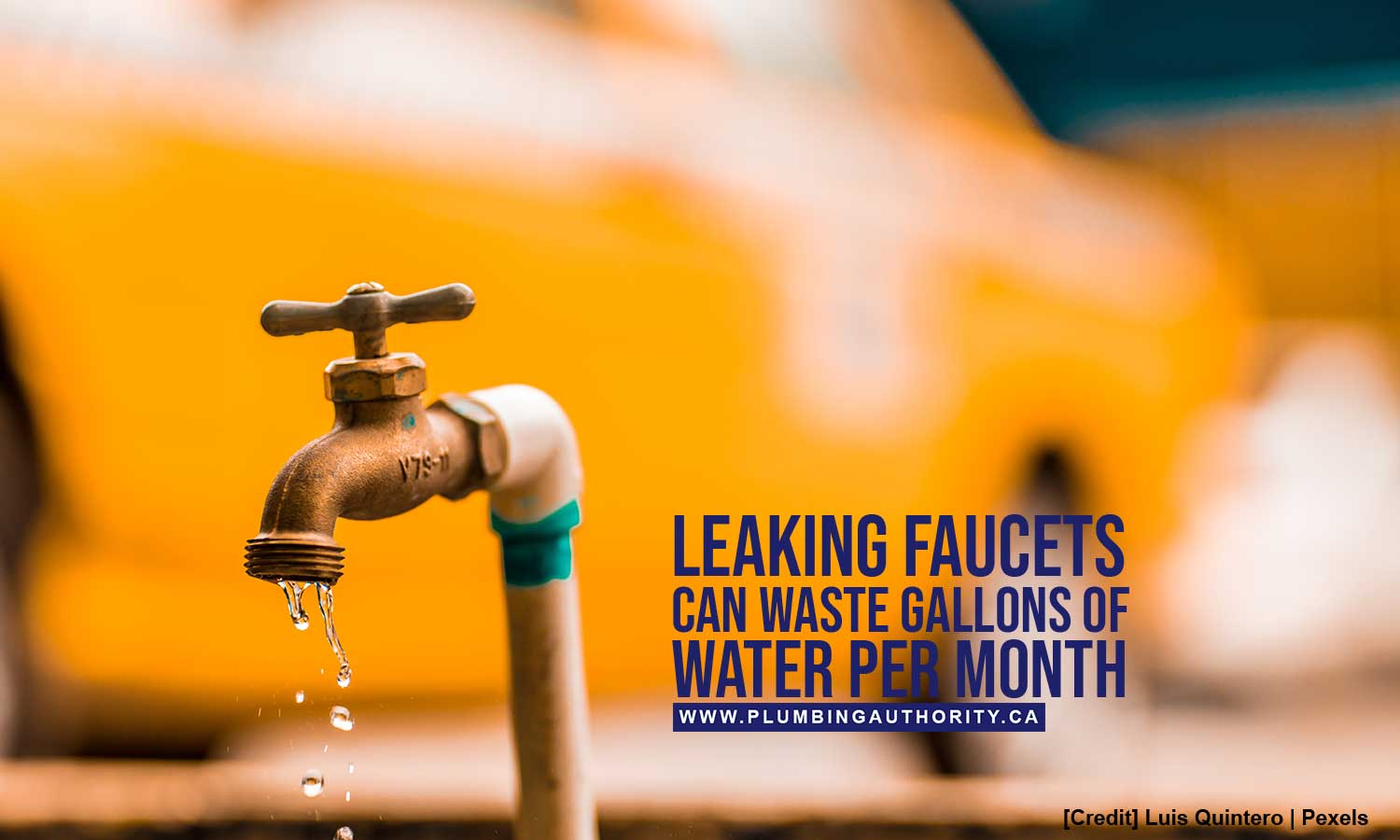 Leaking faucets can waste gallons of water