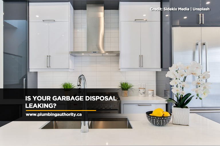 Is Your Garbage Disposal Leaking?