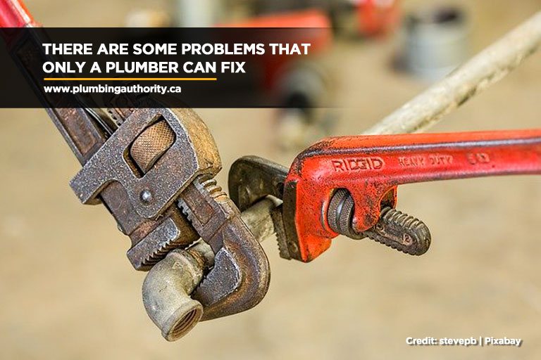 There are some problems that only a plumber can fix
